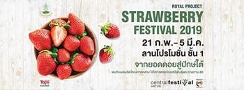 Royal Project Strawberry Festival 2019 @CentralFestival Hatyai Zipevent