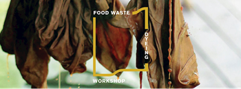 Food Waste Dyeing Workshop Zipevent